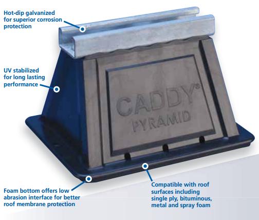 Caddy P Image